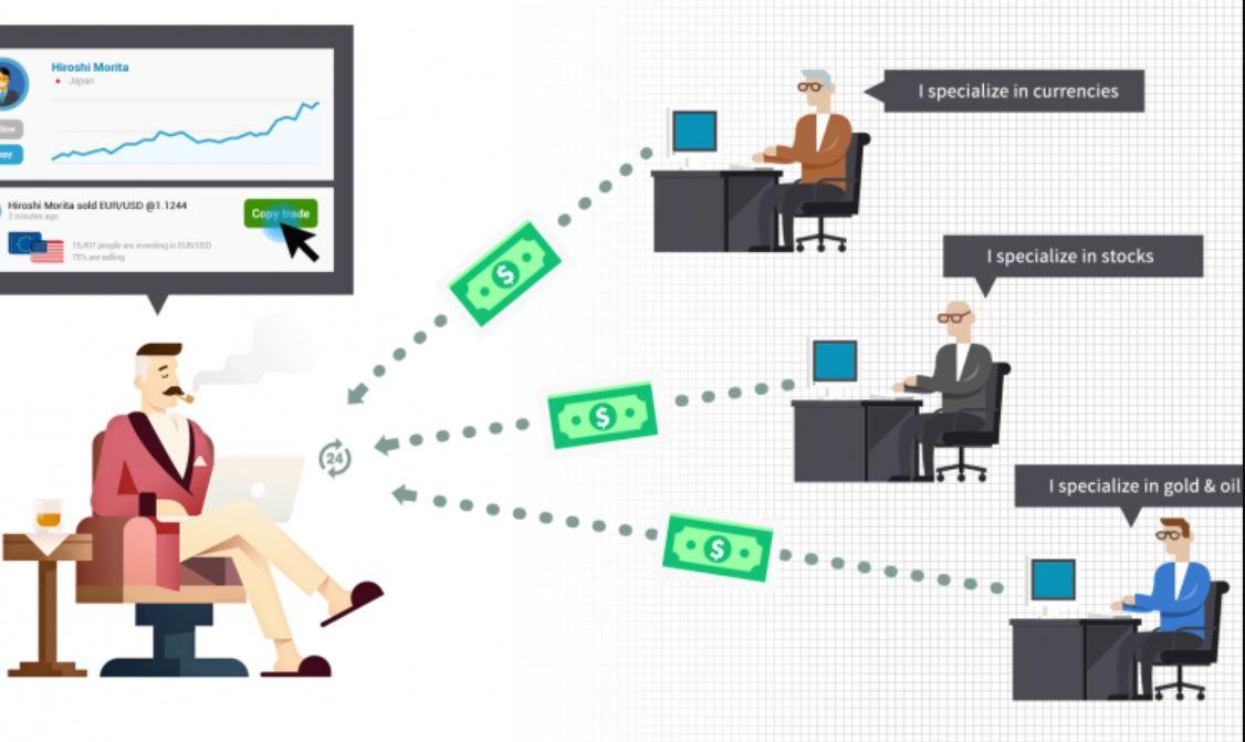 Social Trading Zulutrade vs. eToro
