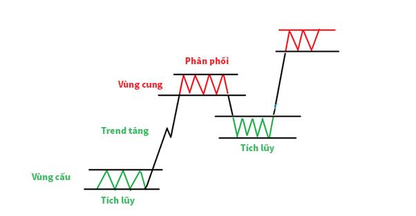 cấu trúc thị trường và vùng cung cầu