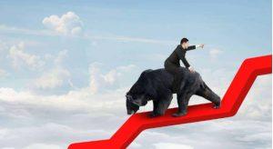 Cách tận dụng lợi thế từ Bear market