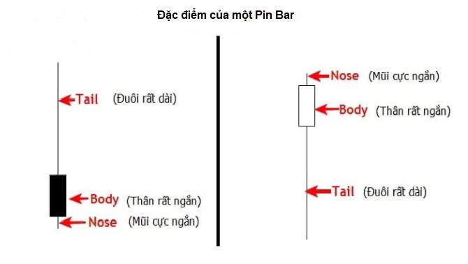 Đặc điểm của Pin bar