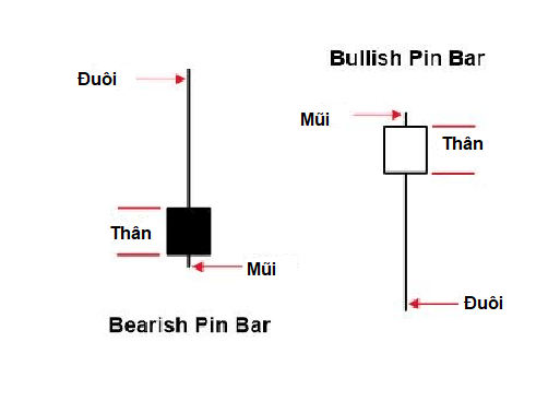Nến Bullish và Bearish