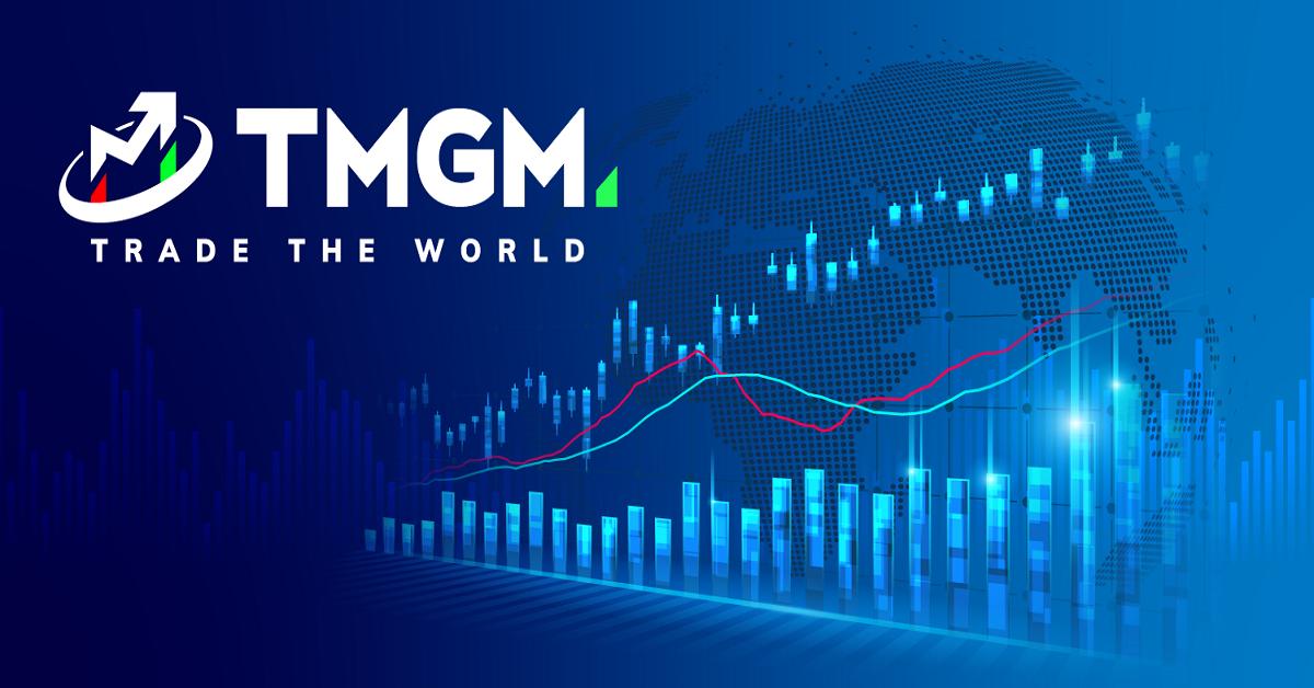 Hãy cùng tìm hiểu về sàn giao dịch TMGM cùng Vnrebates nhé!