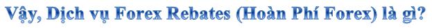 Dịch vụ Forex Rebates (Hoàn phí Forex)