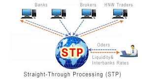 Sàn STP trong Forex