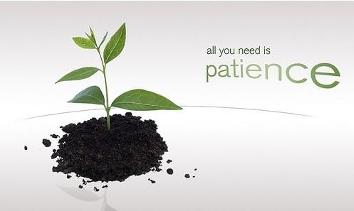 Giao dịch trên thị trường forex cần sự kiên nhẫn